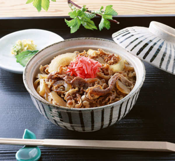Gyudon Beef Bowl Recipe - Japan Centre